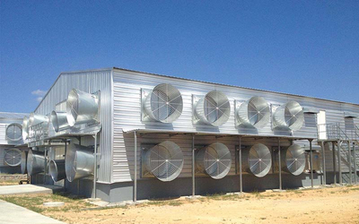 Popular Galvanized Prefabricated Steel Structure Broiler Poultry Chicken House of Farms